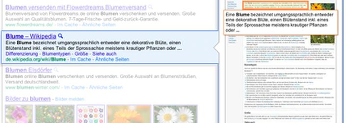 Google startet 'Instant Preview'